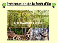presentation-foret