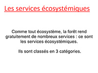 services-ecosystemiques